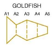 Goldfish model